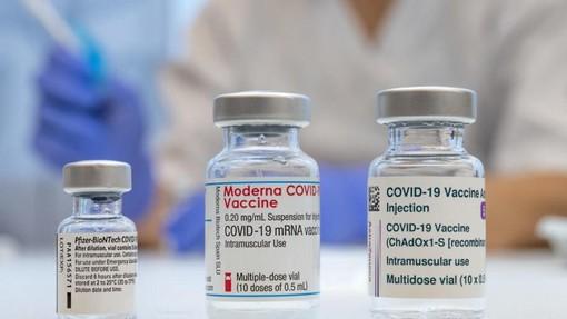 Vaccino e sclerosi multipla: Moderna genera livelli anticorpali tre volte più alti di Pfizer, lo dimostra per la prima volta una ricerca italiana